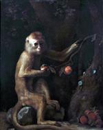 A Monkey 1799