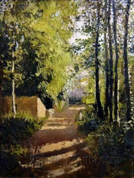 Alley undergrowth in Normandy