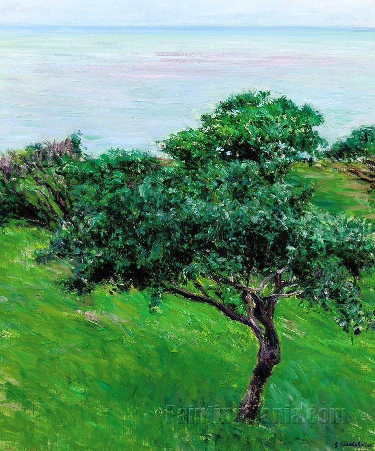 Apple Trees on edge of Sea, Trouville