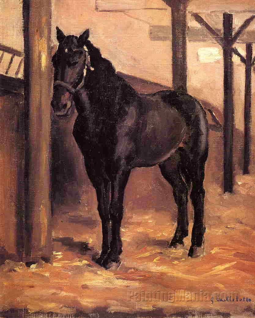 Yerres, Dark Bay Horse in the Stable