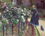 Roses, Garden at Petit Gennevilliers