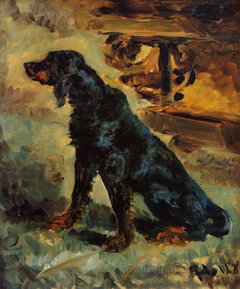 Dun, a Gordon Setter Belonging to Comte Alphonse de Toulouse-Lautrec