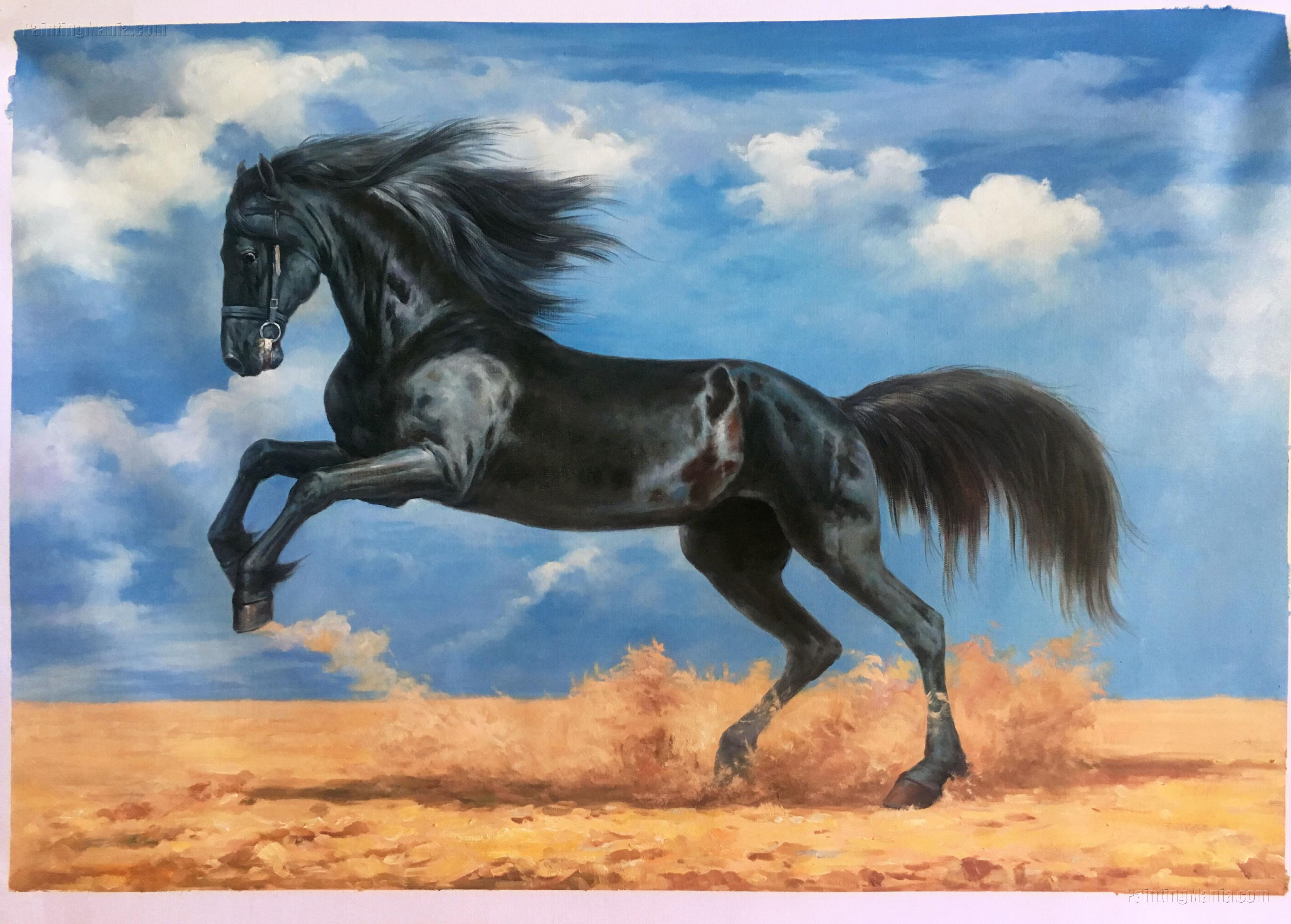 Galloping Black Horse on the Plains