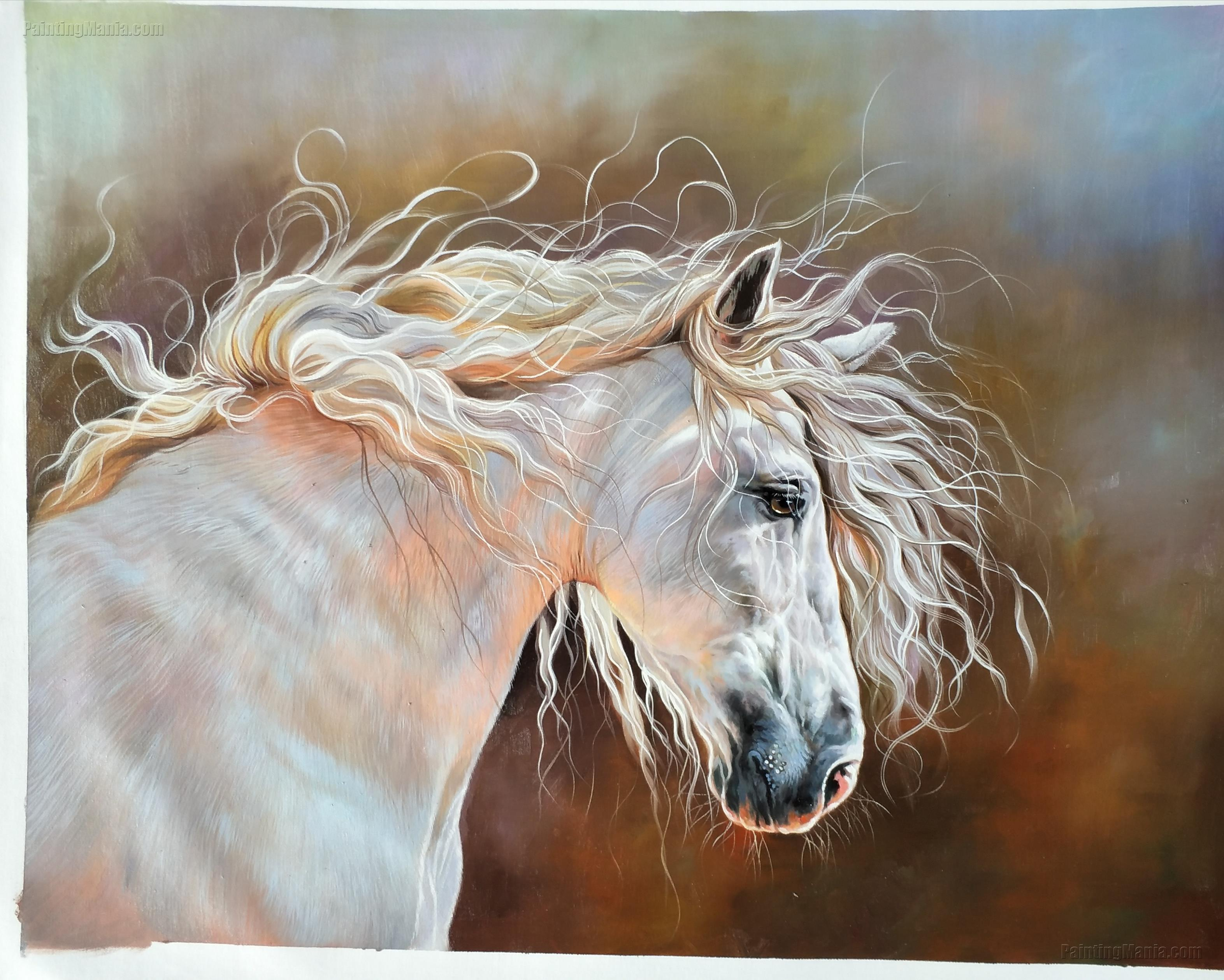 The Head Of Beautiful White Horse Horses Animals Paintings