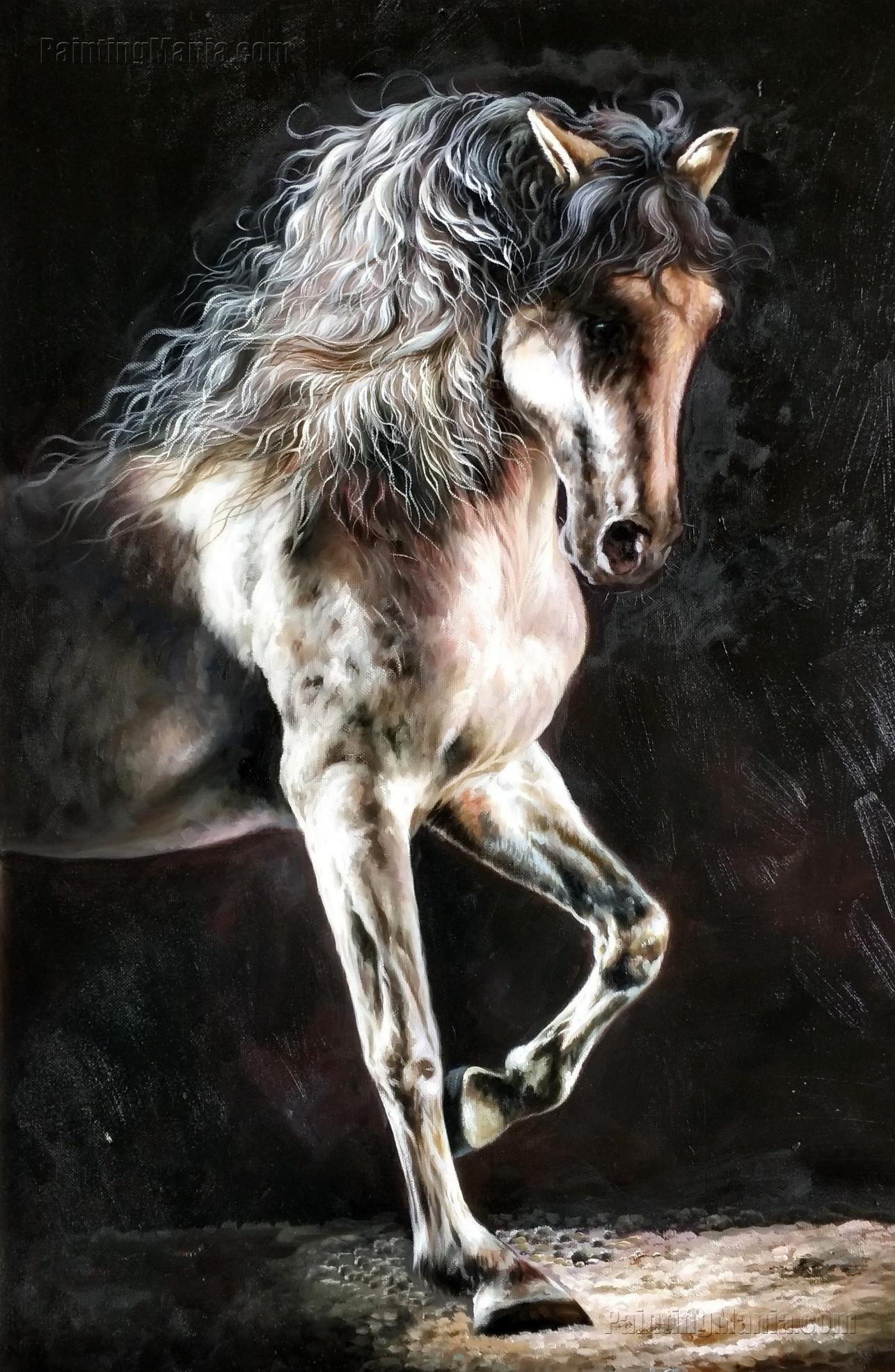 The Horse with Black Background