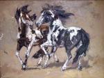 Horse-0009