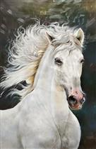 The Long Hair Beautiful White Horse