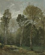 View of a Copse
