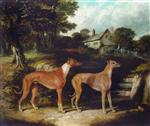 'Enterprise' and 'Enchantress' two greyhounds in an extensive landscape