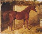 'Langar', a chestnut racehorse outside a stable