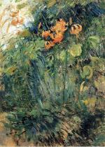 Tiger Lilies 1893