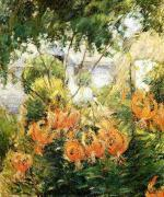 Tiger Lilies 1896-1899