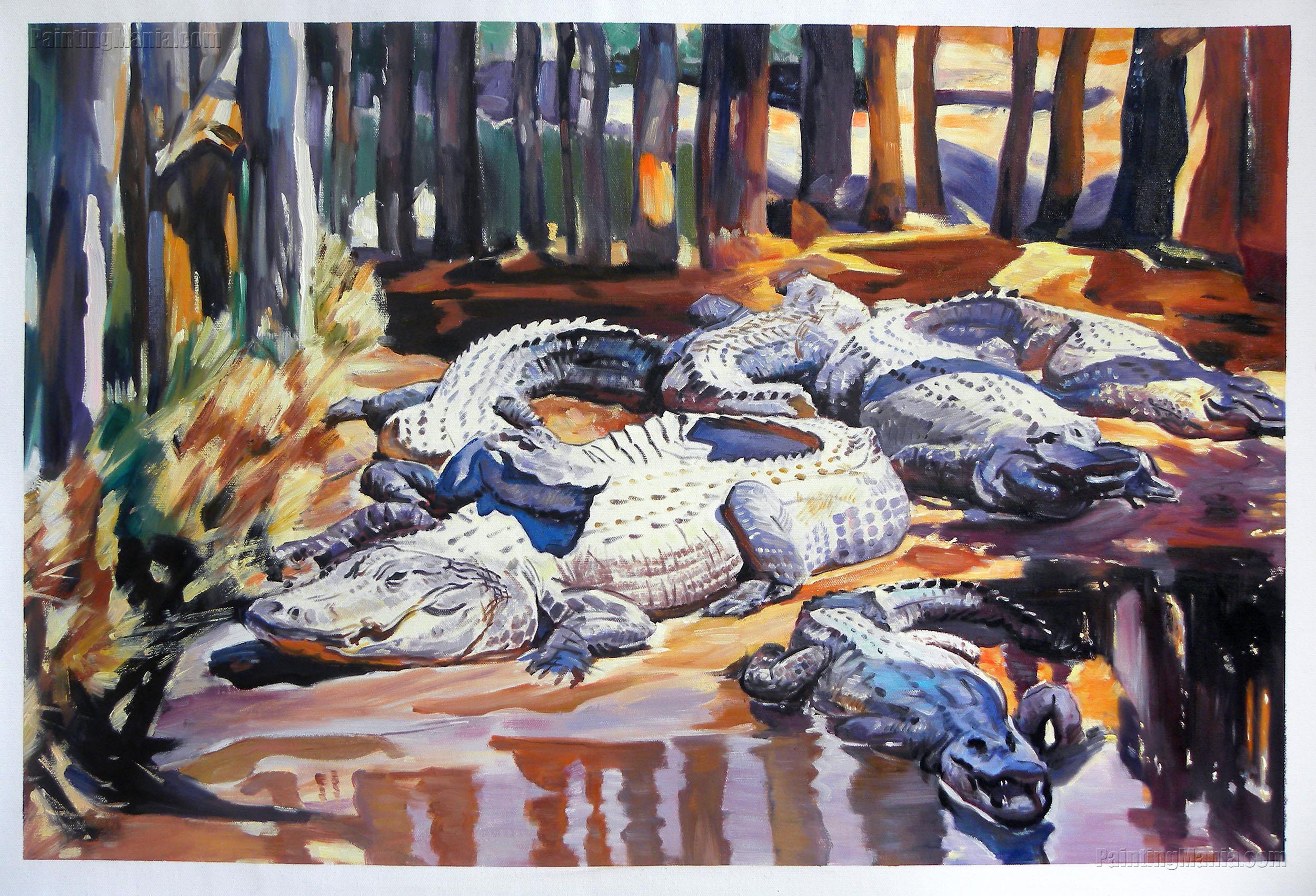 Muddy Alligators
