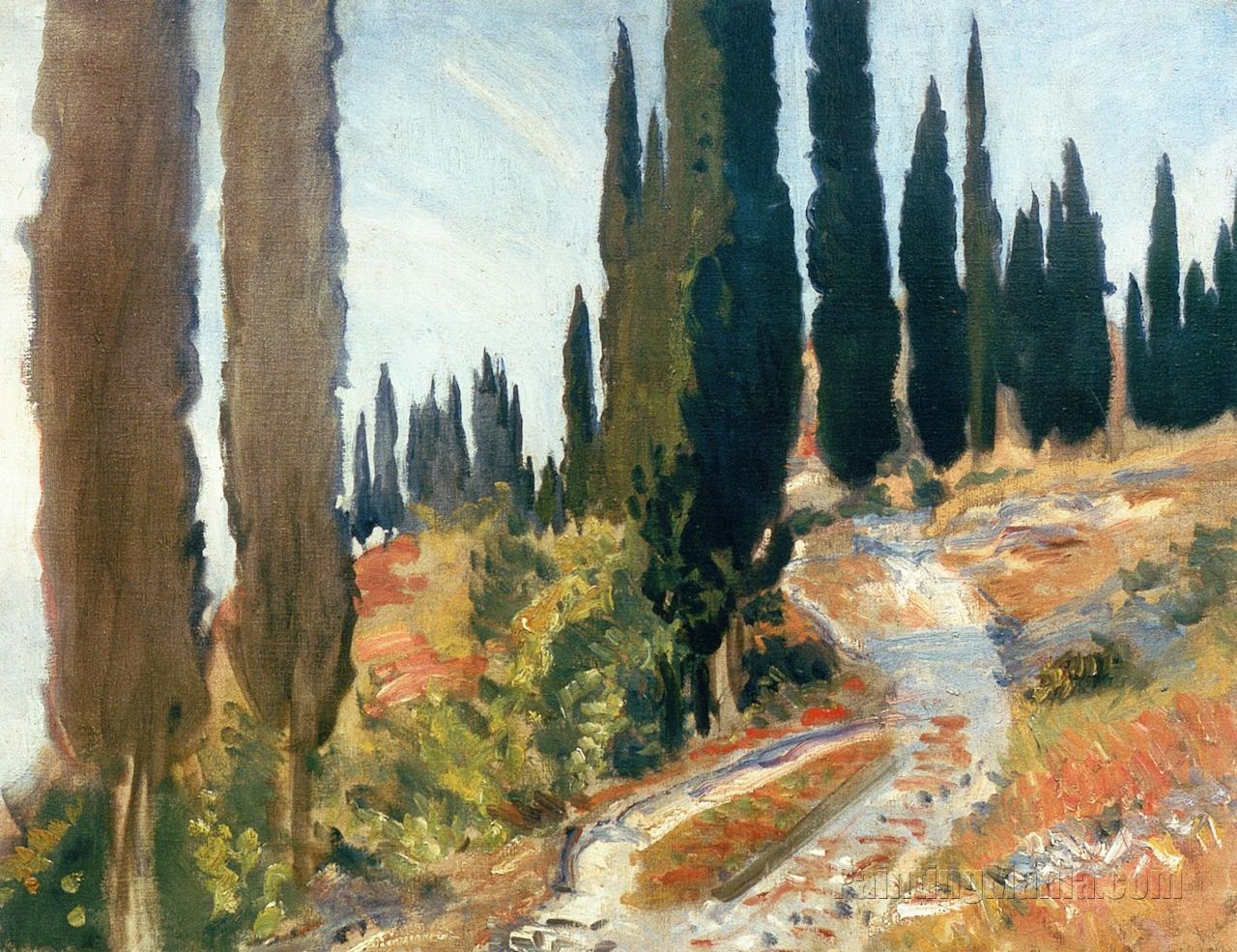 A Winding Road and Cypress Trees, San Vigilio