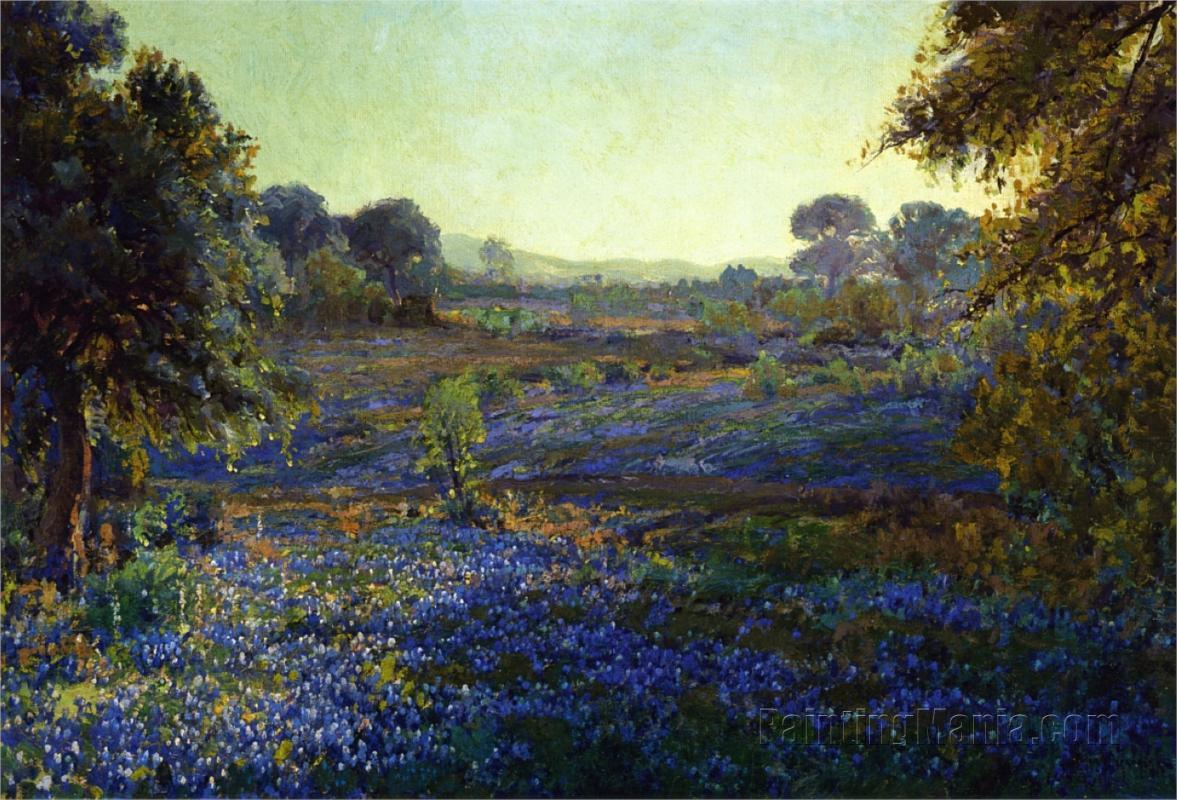 Bluebonnets at Late Afternoon, near La Grange