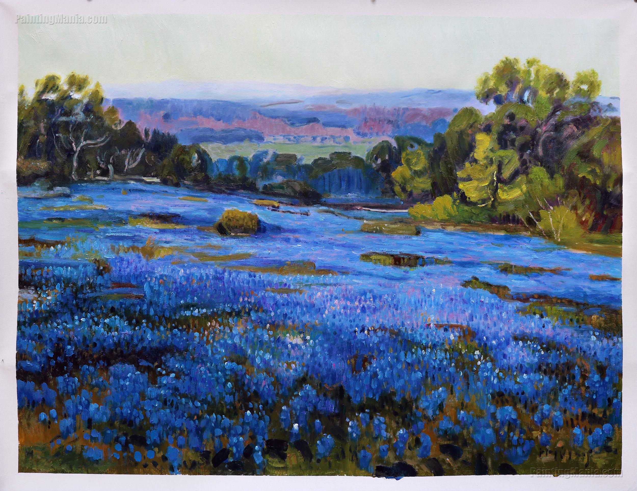 Bluebonnets, Late Afternoon, North of San Antonio