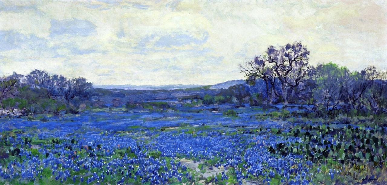 Field of Bluebonnets 3