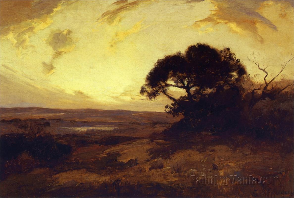 Golden Evening, Southwest Texas 1911