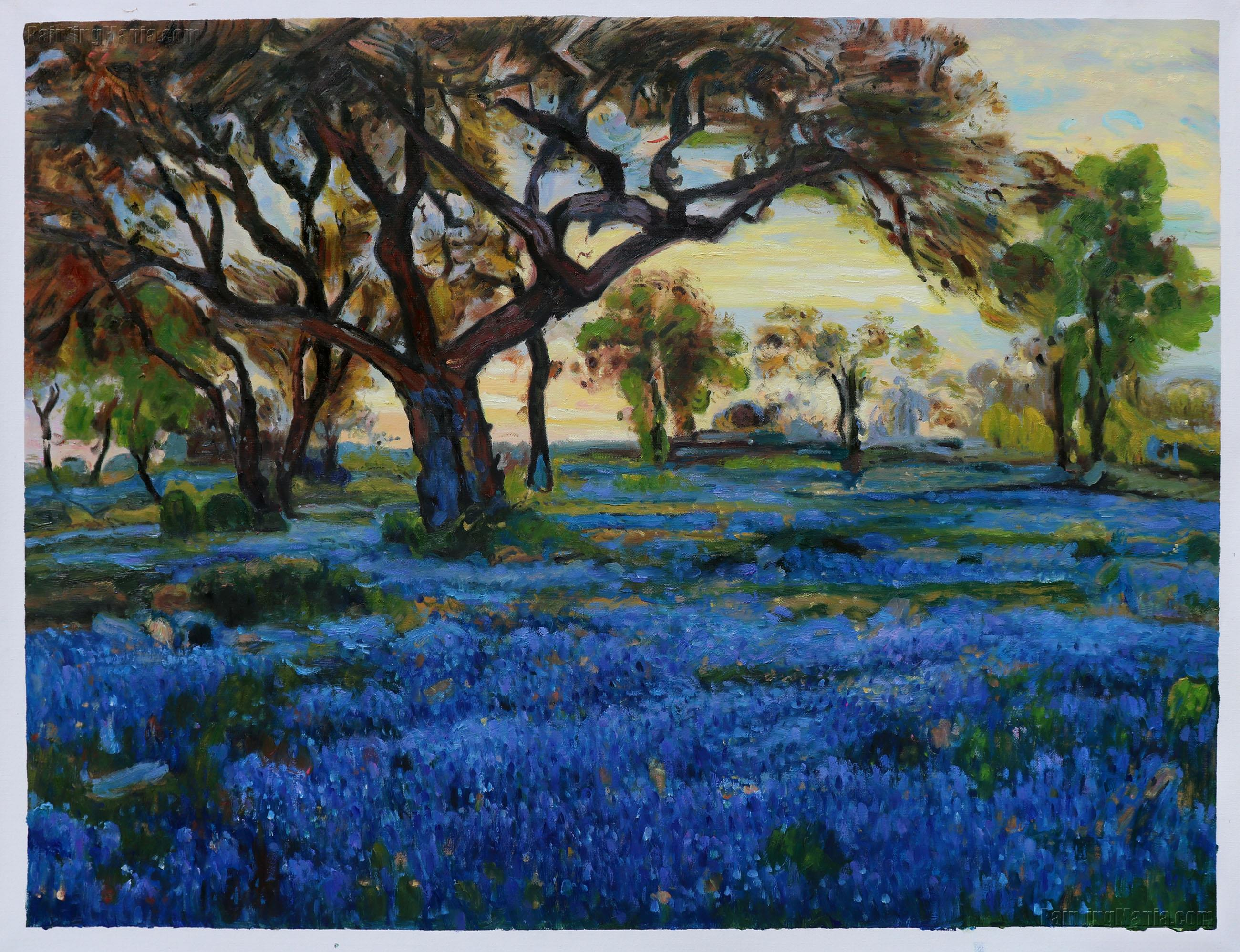 Old Live Oak Tree and Bluebonnets on the West Texas Military Grounds, San Antonio