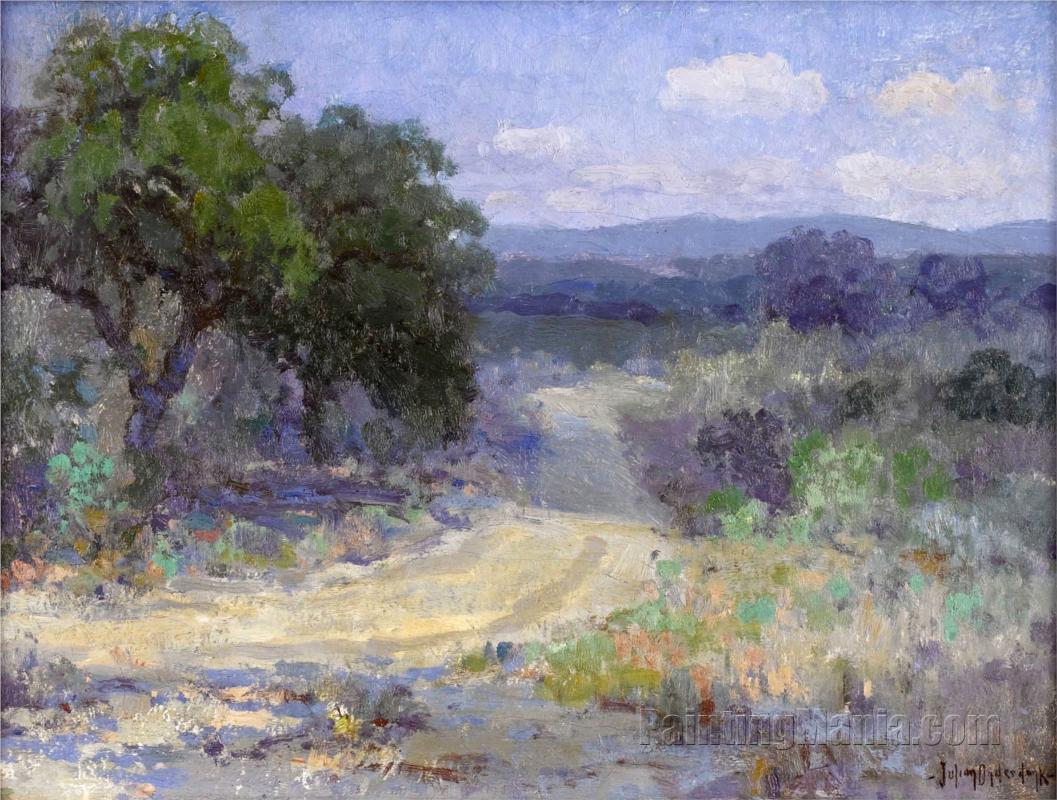 A Path Through the Texas Hill Country