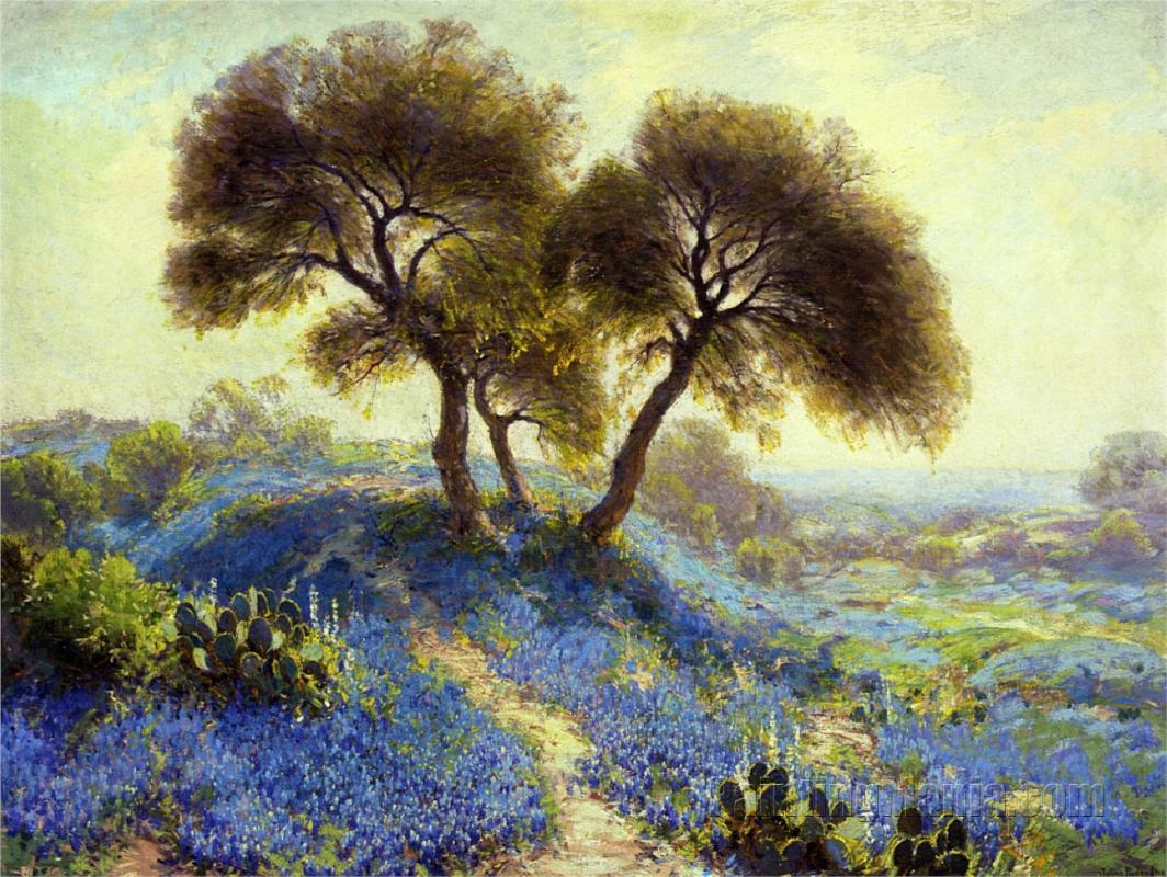 A Spring Morning, Bluebonnets, San Antonio