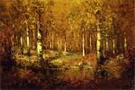 Autumn Birches, Central Park