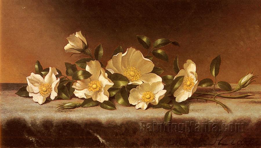 Cherokee Roses on a Light Gray Cloth