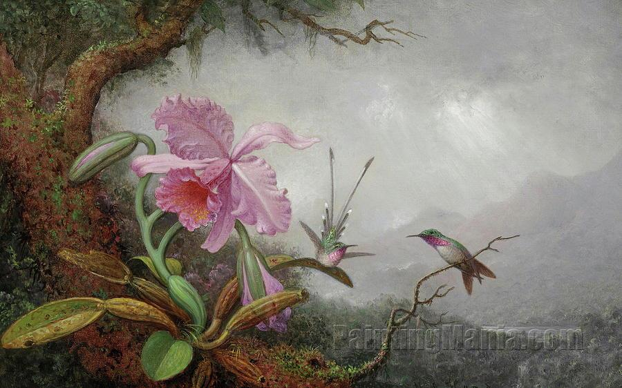 Hummingbirds and Orchids 2