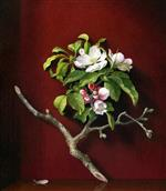 Apple Blossoms in a Corner