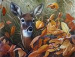 A Deer in Meadow