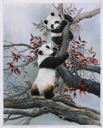 Panda Cub Climbs a Tree