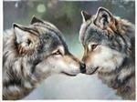 Sweet Gray Wolf Couple Portrait