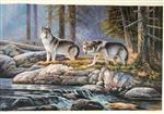 Wolves by the Forest Brook