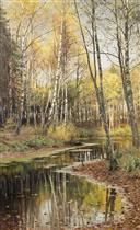 Birch Forest in the Autumn Light