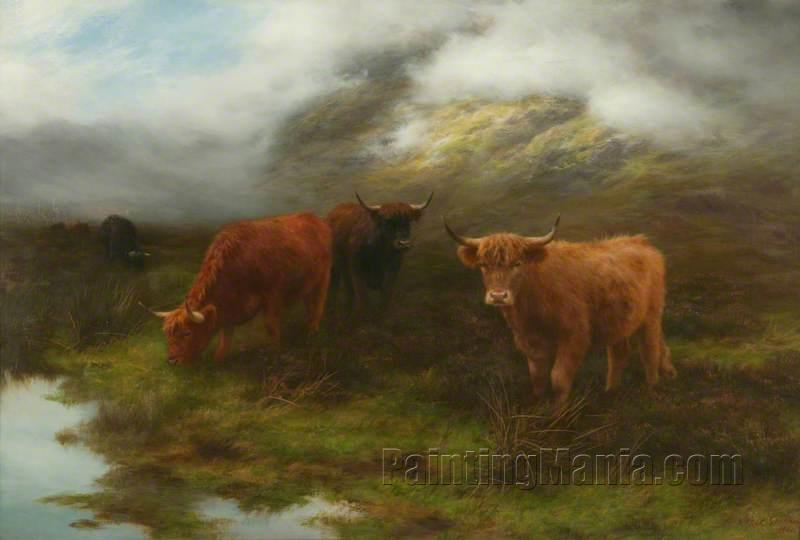 Highland Cattle, Perthshire