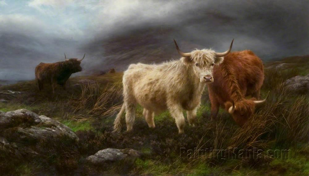 Highland Pastures 1897