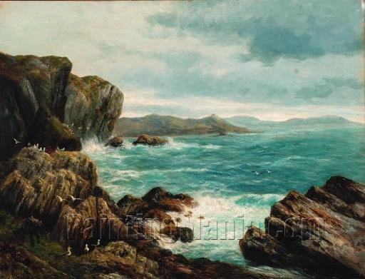 Seagulls in a Rocky Coastal Landscape