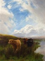 Cattle in Strathclyde