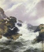 The Seabirds' Domain