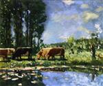 Cows on the Banks of a Pond
