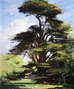 Cedar Tree, Coombe Bank