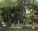 Cedars at Combe Bank, near Sevenoaks, Kent