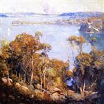 Sydney Harbour 1907