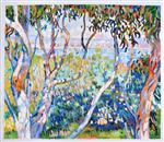 Eucalyptus, at Saint-Tropez