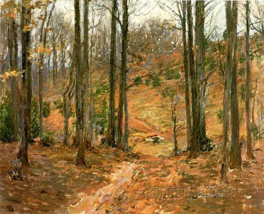 Virginia Woods