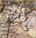 Blossoms at Giverny
