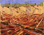 Sandbank with Logs