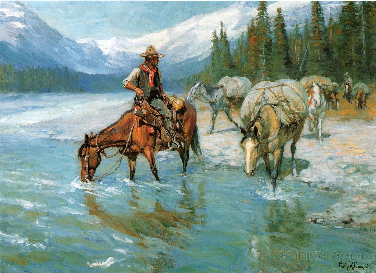 Bow River Banff Horses Cowboy
