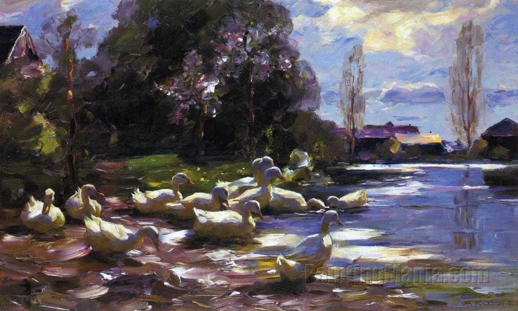Twelve Ducks Setting Out