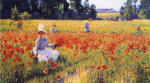 Coquelicots (In Flanders Field)